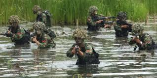 Pasukan TNI saat melakukan pengejaran KKB di Papua. (Ilustrasi Int)