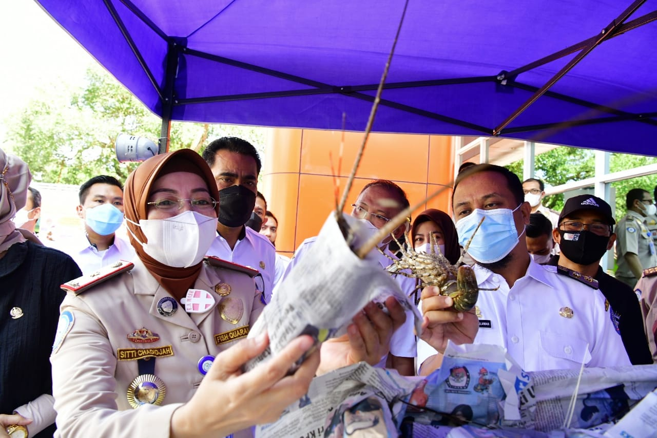 Plt Gubernur Sulsel Andi Sudirman Sulaiman saat melepas ekspor ikan ke berbagai negara, Rabu 14 April 2021. (Ist)